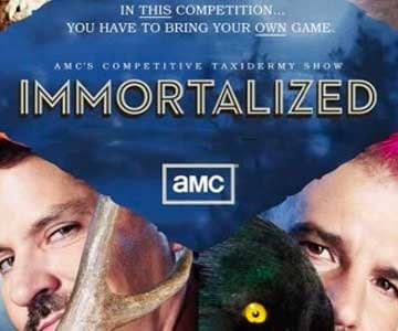 immortalized-grid