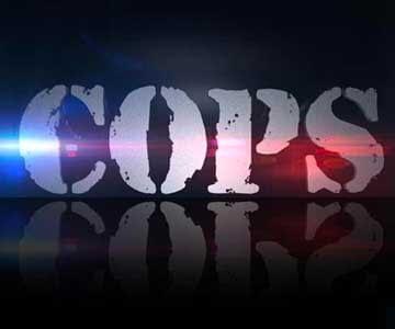 cops-grid